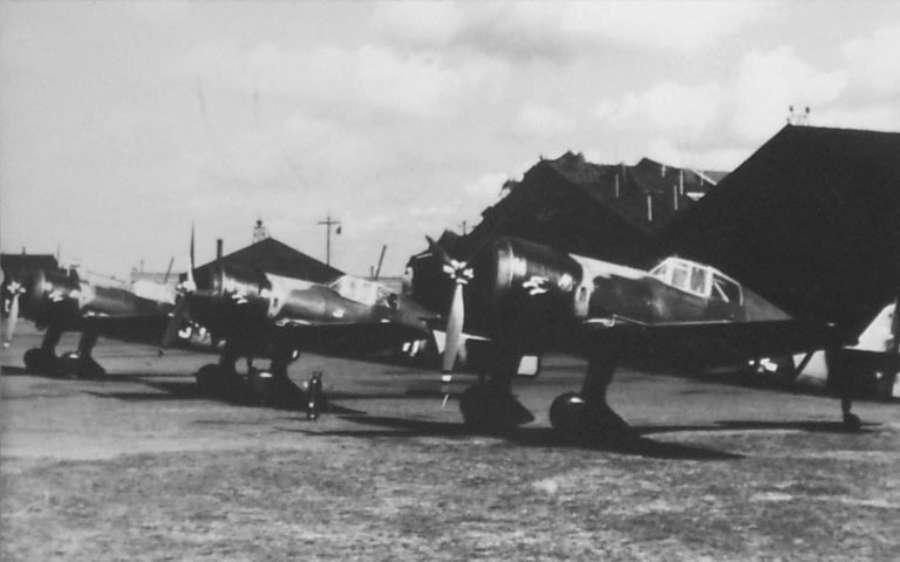 Fokker D-XXI no. 229